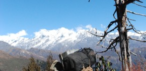 Kanchenjunga range utteray trek sikkim 12